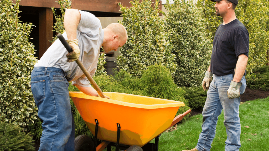 Two men are doing physical work in the gardening on a lawn